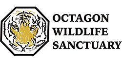Octagon Wildlife Sanctuary